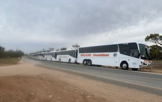 Adelaide Coachlines AJ2019 Scout transport