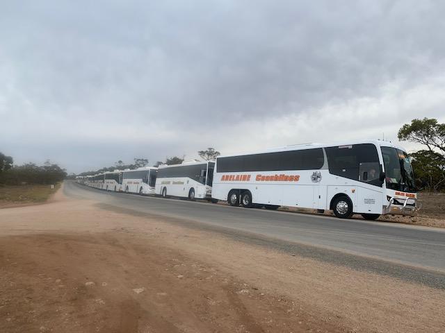 Adelaide Coachlines AJ2019 Scout transport
