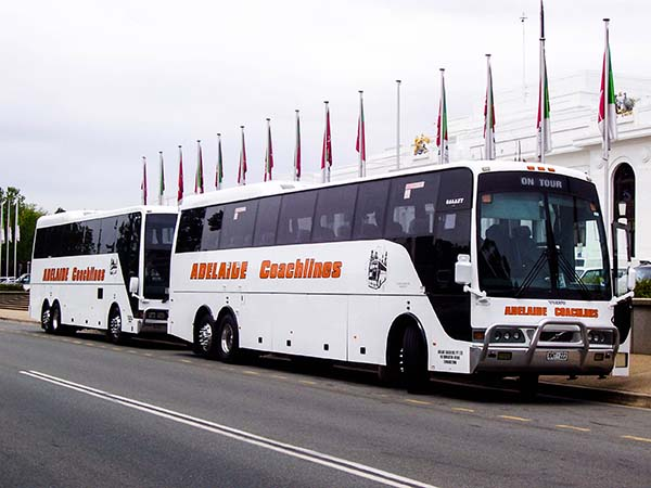 Business Corporate Transport in Adelaide