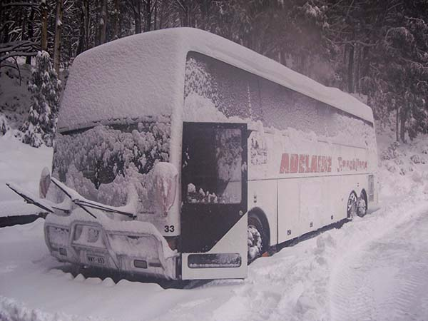 Snow Tours for groups in Adelaide